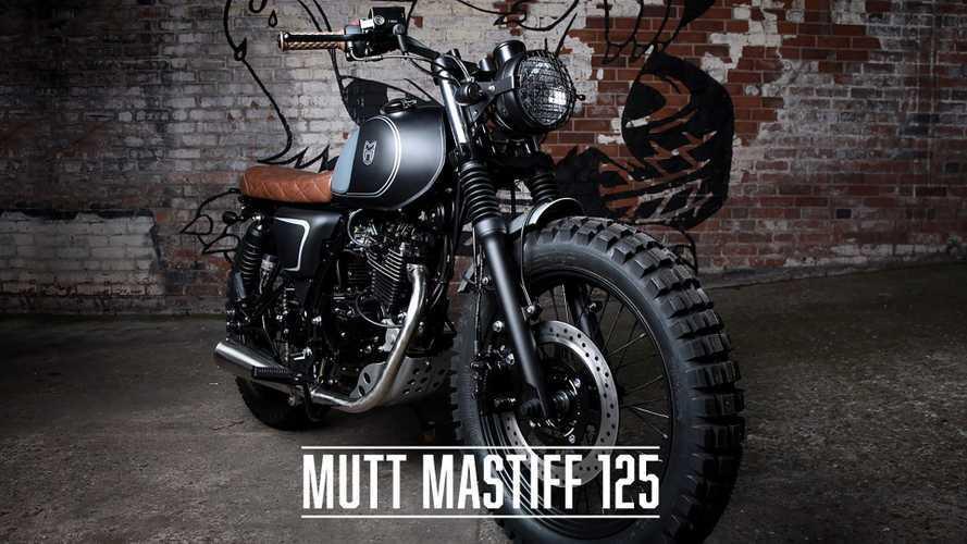 The Mutt Mastiff 125 Has A Tiny Bark But A Bike Bite
