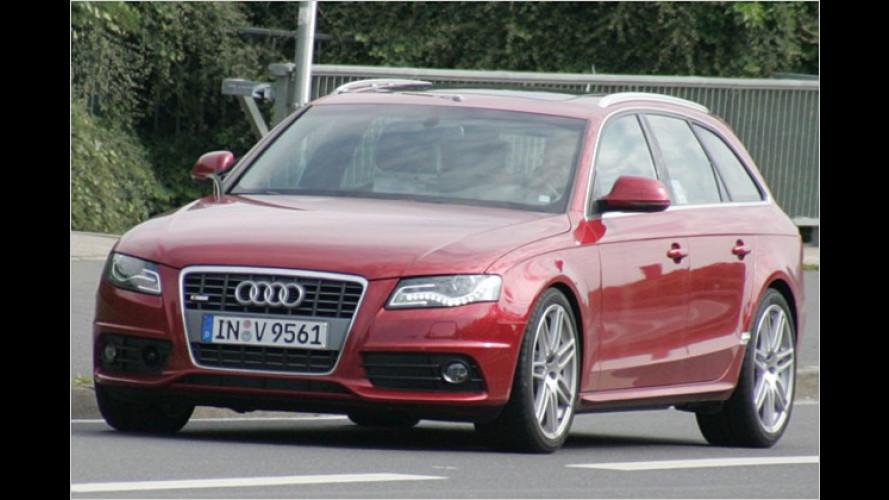 Bringt Audi den neuen A4 Kombi schon bald als S4 Avant?
