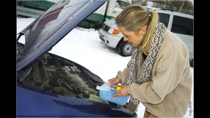 Frostschutz: Beim Discounter billiger als an der Tankstelle