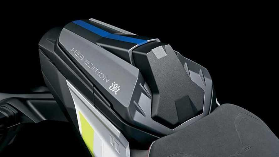2022 Suzuki GSX-S1000 Web Edition