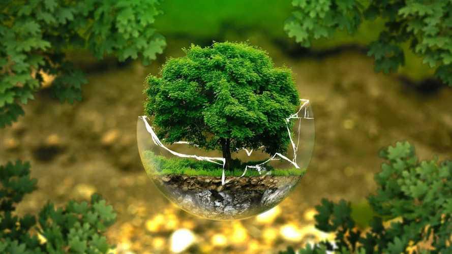 Giornata Mondiale dell'Ambiente, così l'auto fa la sua parte