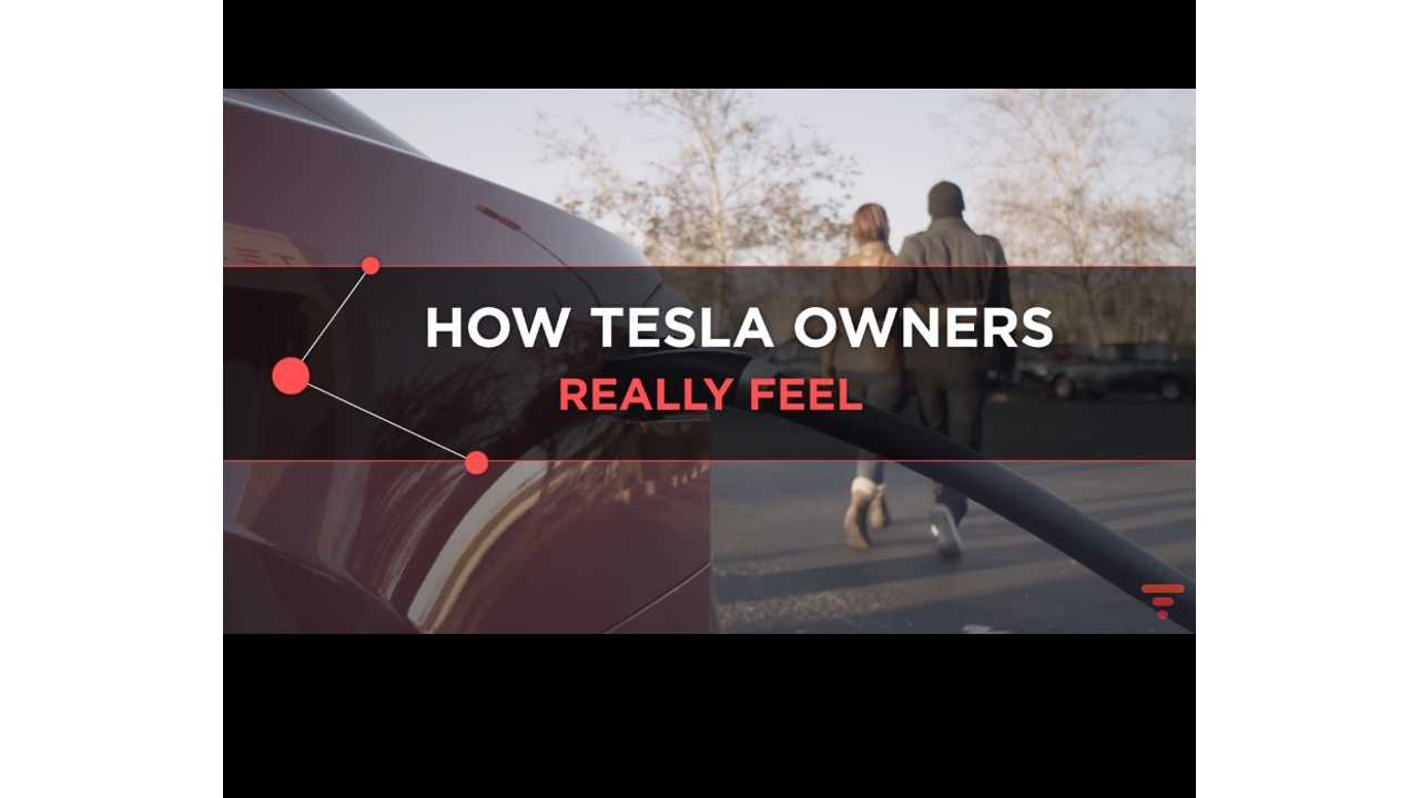 How Do Tesla Owners Really Feel - Make SURE To Watch This Satire