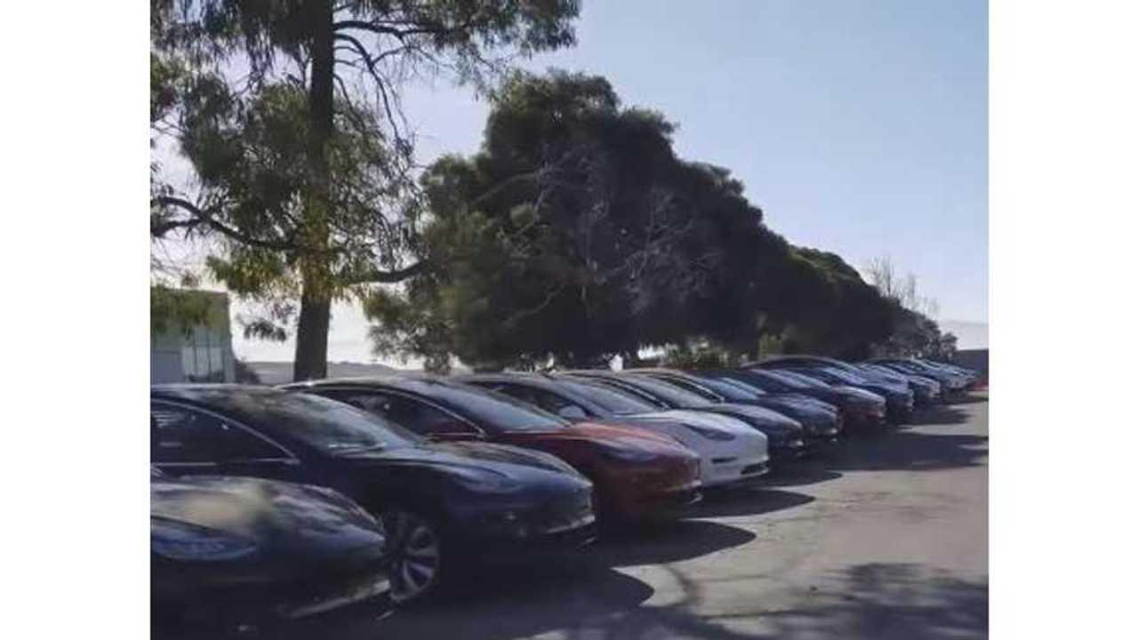 Hundreds Of Tesla Model 3 Cars At Fremont Delivery Center - Videos