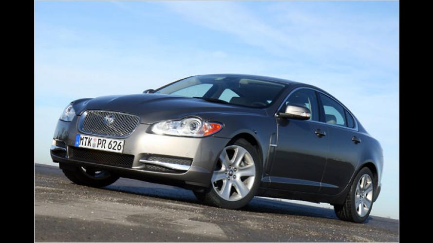 Jaguar wirft mit dem XF alte Traditionen über den Haufen
