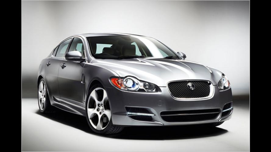 Wie er Euch gefällt: Neue Pakete für den Jaguar XF Diesel S