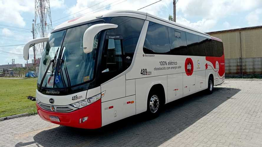 BYD desarrolla un prototipo de autobús eléctrico con energía solar