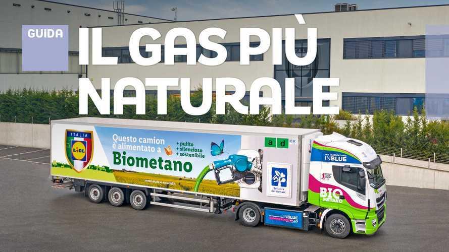 Biometano, cos'è e perché è l'alternativa al diesel più ecologica