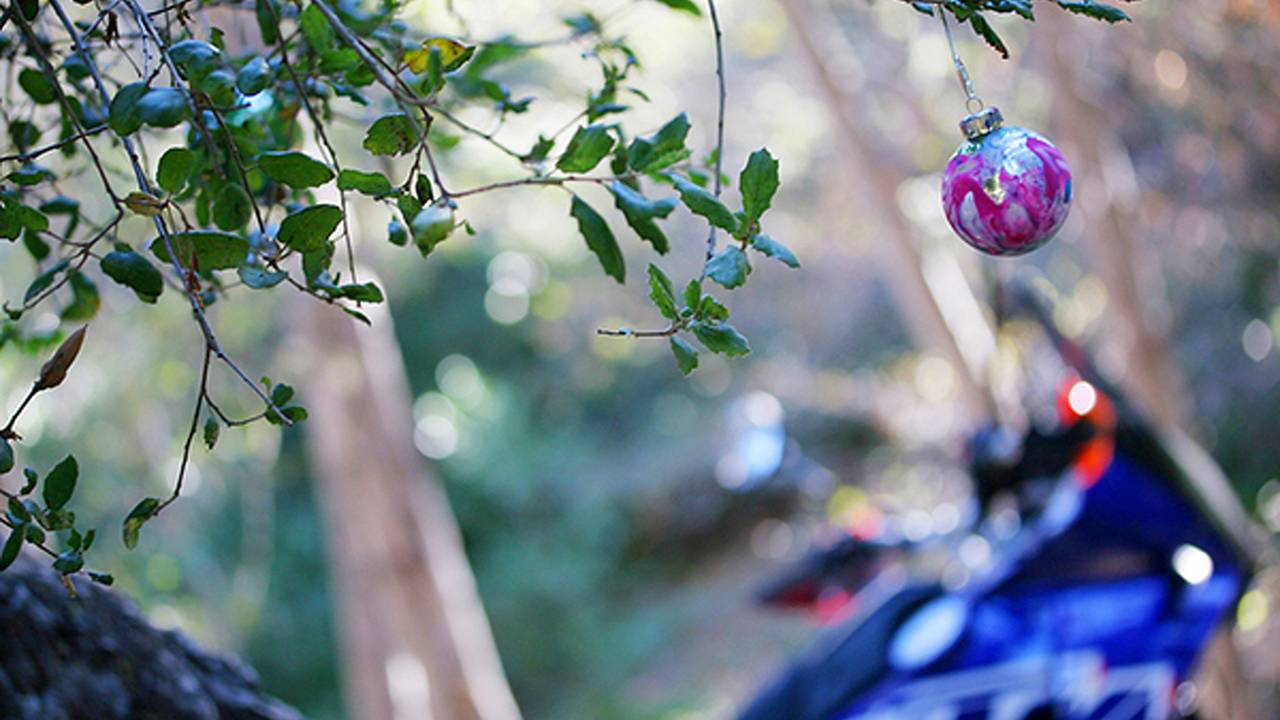 A biker's guide to Christmas