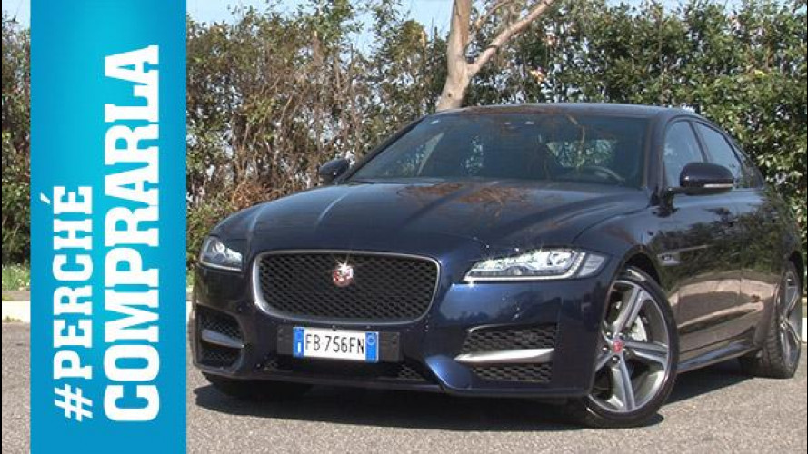 Jaguar XF, perché comprarla... e perché no [VIDEO]