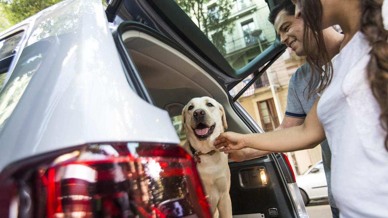 5.- Protección para tu coche