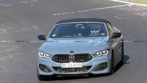 2019 BMW 8 Series Convertible Casus Fotoğraflar