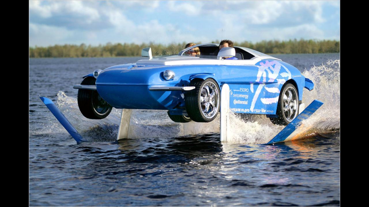 Splash (2004)