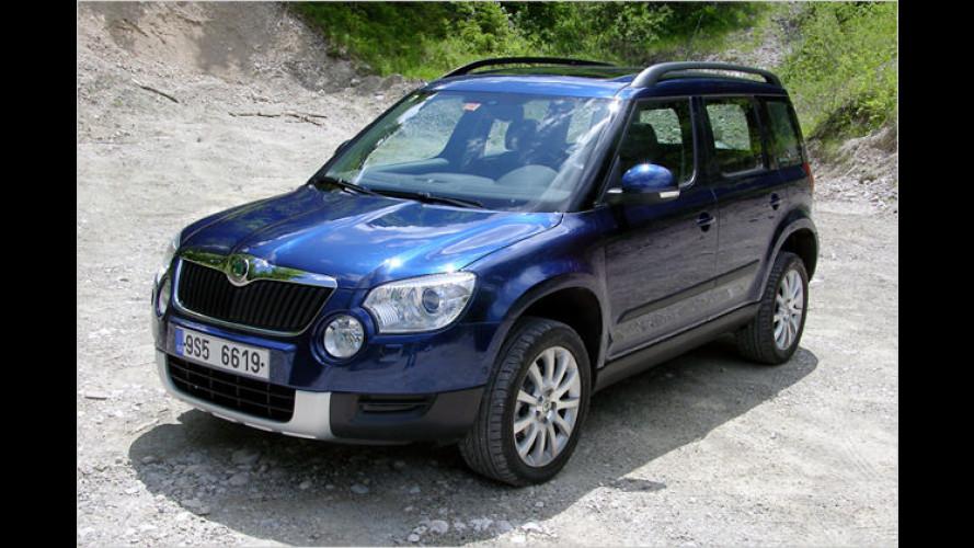 Der Yeti lebt: Neues Kompakt-SUV von Skoda im Test