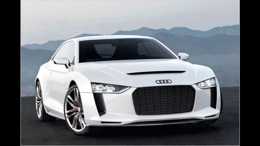 Audi quattro concept: Hommage an eine Legende