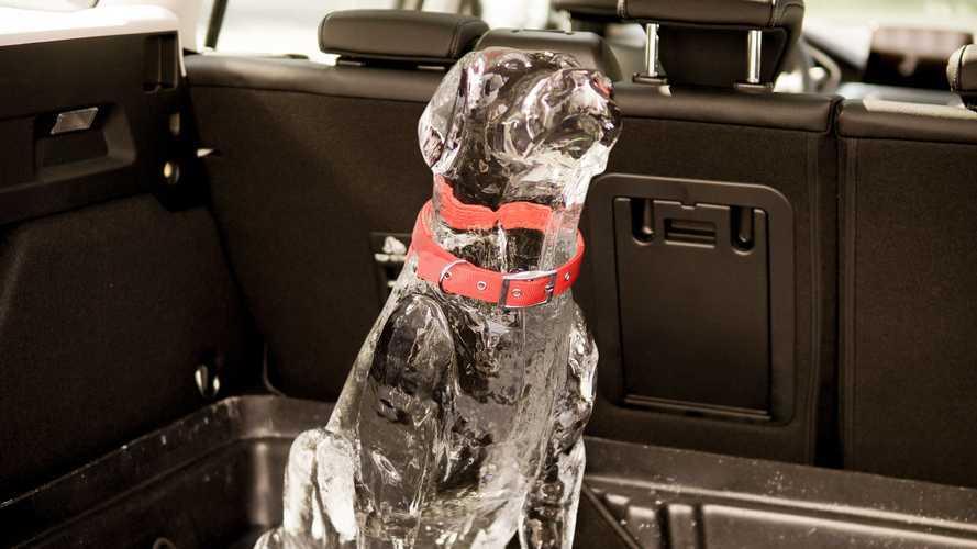 Ford'dan dikkat çeken güvenlik paylaşımı!