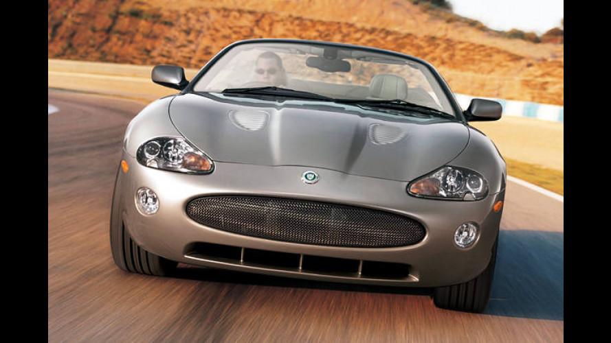 Jaguar XKR Celebration: Krallen geschärft und Fell gebürstet