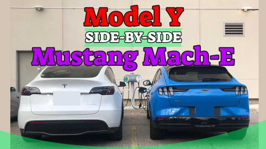 See Tesla Model Y And Ford Mustang Mach-E Side By Side For First Time
