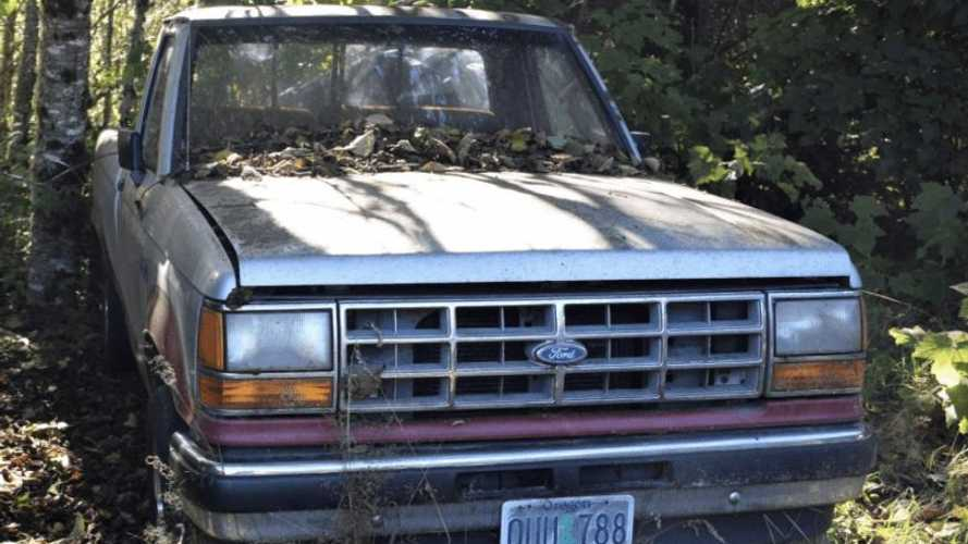 Why this forgotten barn find pickup is the perfect project
