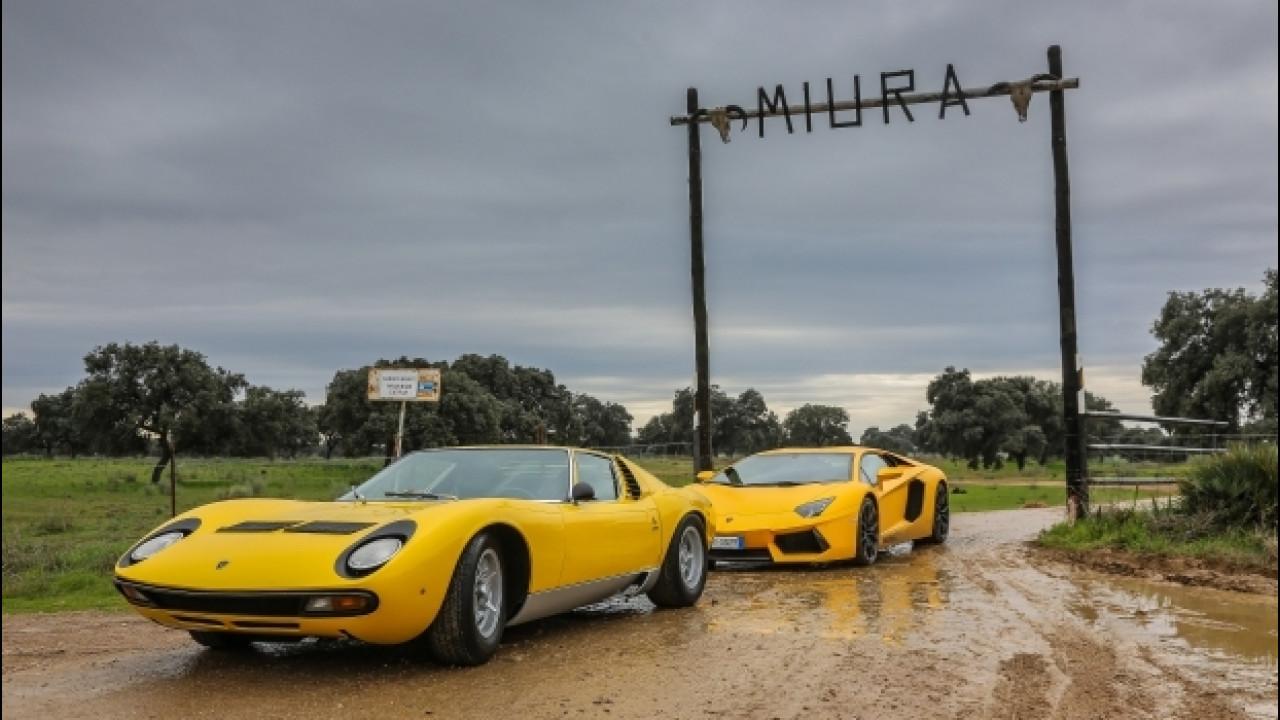[Copertina] - Lamborghini Miura, un viaggio alle origini del nome