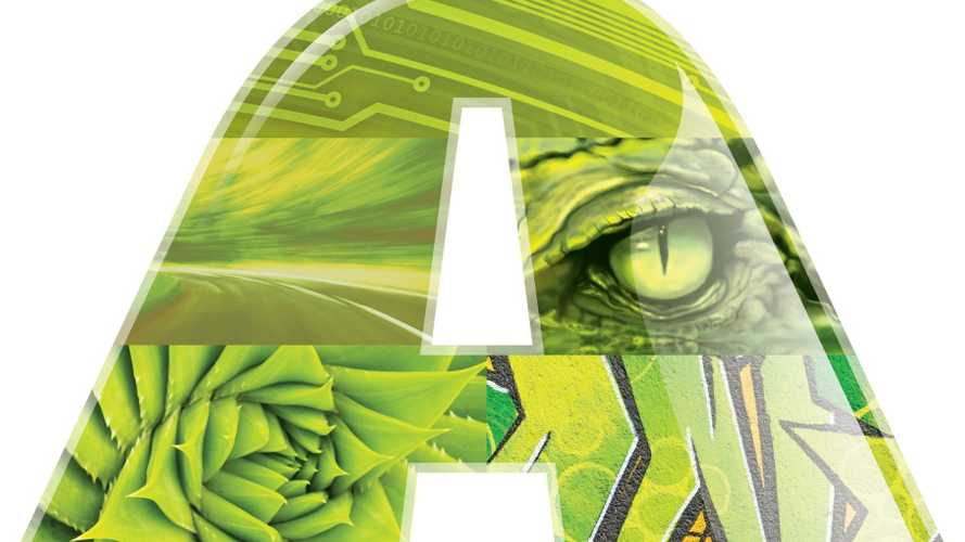 Hulkish Hue Named 2021 Color Of The Year