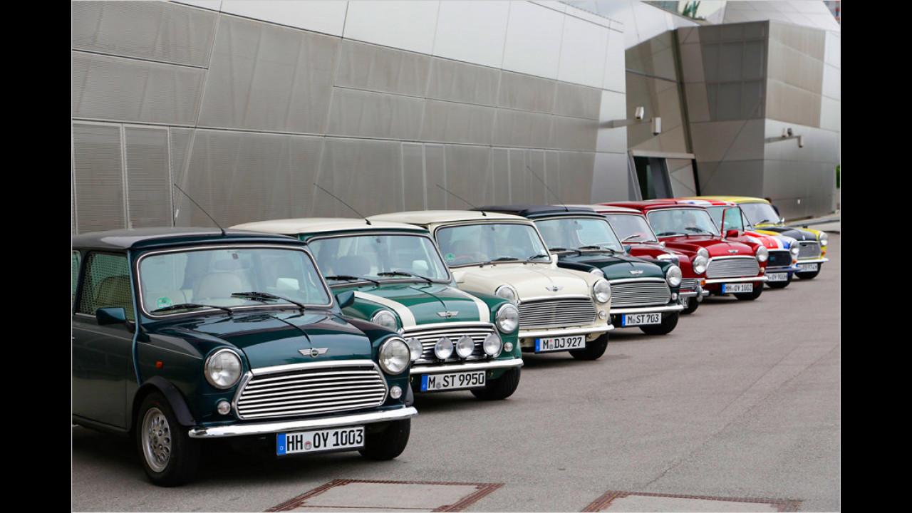 In Reih und Glied stehen sie da: Einer dieser acht Ur-Minis wird uns von München bis nach Mugello bringen.