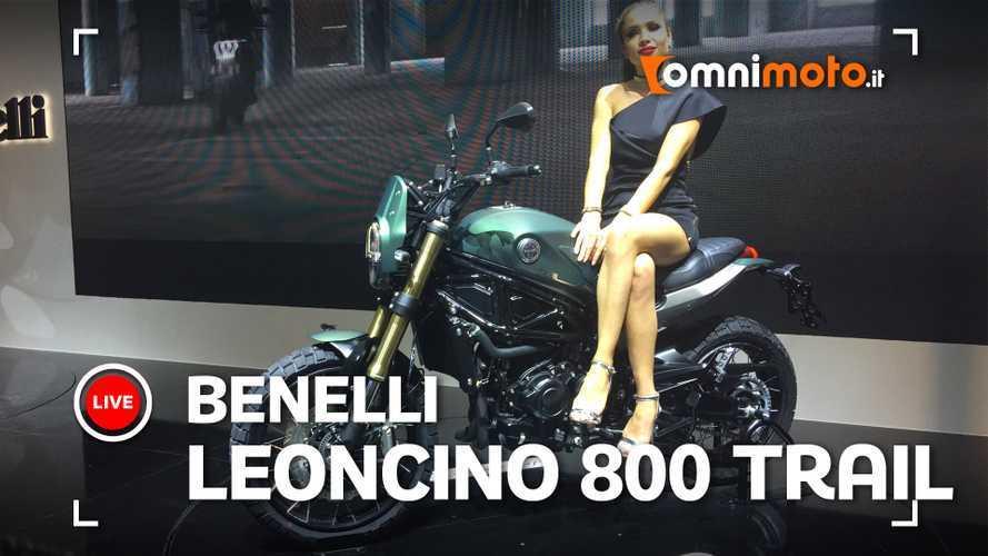 Benelli Leoncino 800 Trail, la scrambler pesarese diventa grande