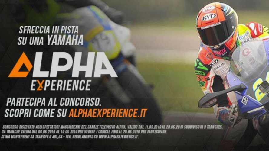 Alpha Experience, dalla TV alla pista