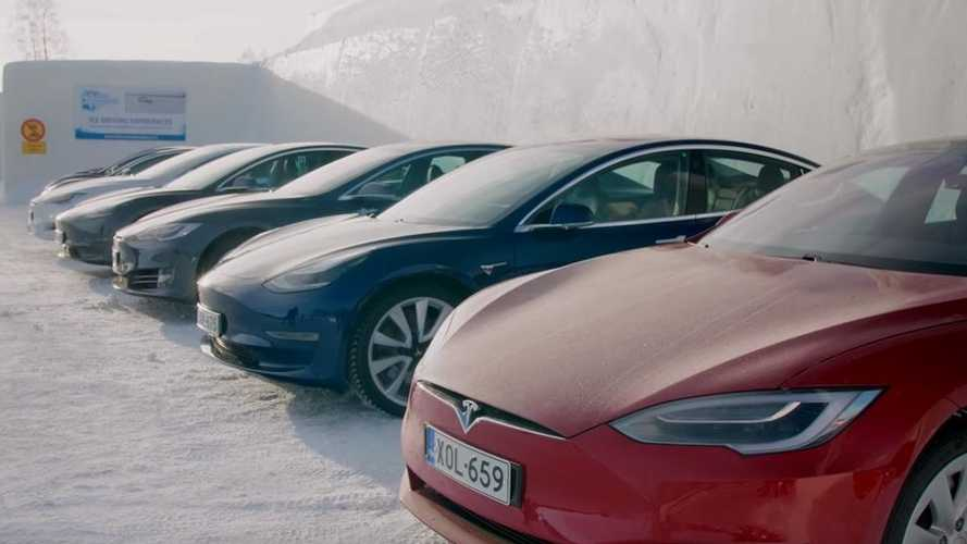 Tesla Model 3 vs Model Y: Crazy Reindeer Experience In Finland