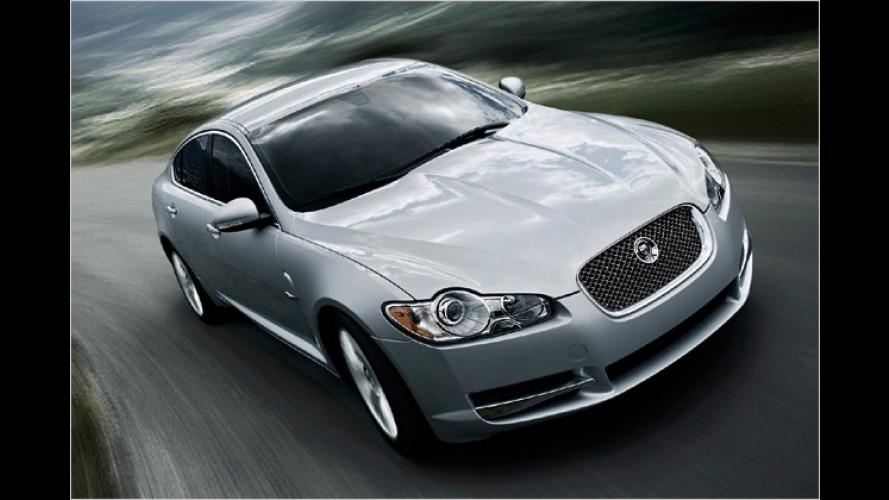 Genügsam und stark: Neuer Dreiliter-Diesel für Jaguar XF