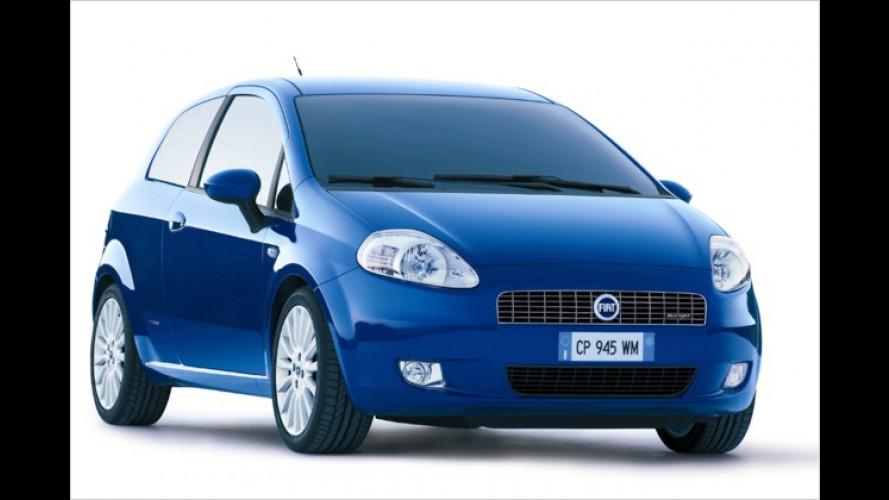 Fiat Punto: Erste Bilder und Fakten zur neuen Generation