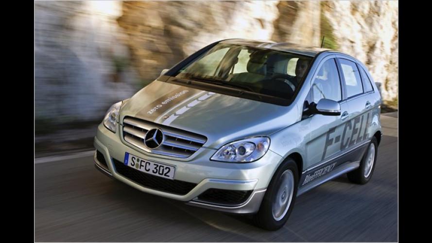 Fünf E-Autos mit Umweltpreis ÖkoGlobe ausgezeichnet