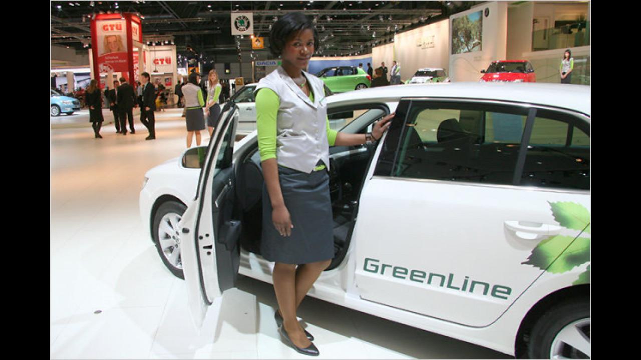 Hier lassen wir uns grad erklären, was GreenLine bedeutet