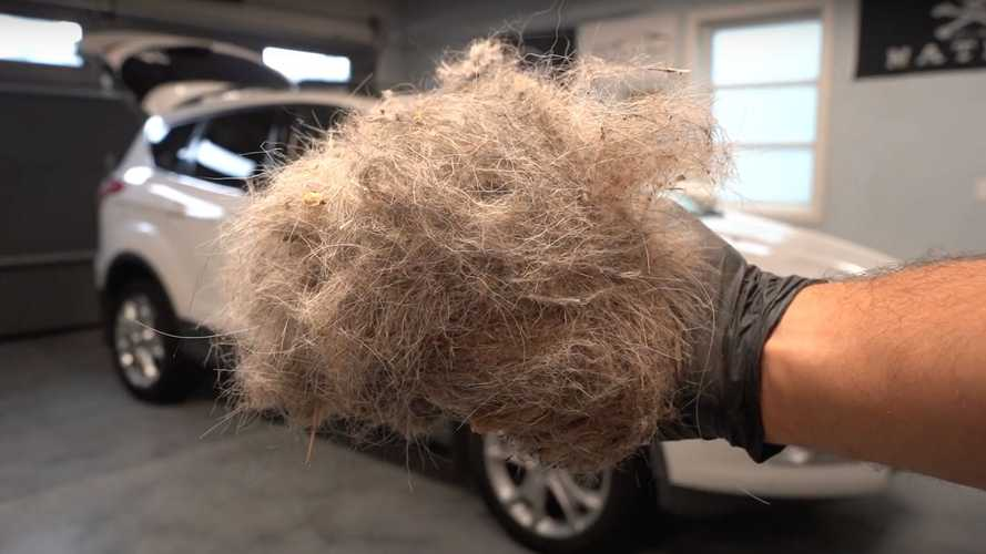 Dog Hair-Filled Ford Escape Gets The Cleaning It Deserves