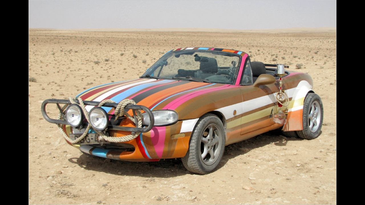 Wüsten-Fuchs