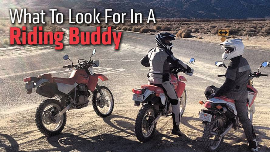 What To Look For In A Riding Buddy