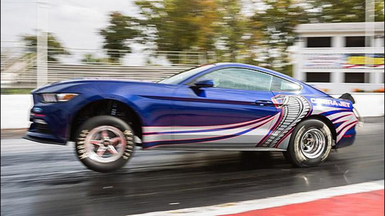 [Copertina] - Ford Mustang Cobra Jet, occhio all'impennata! [VIDEO]