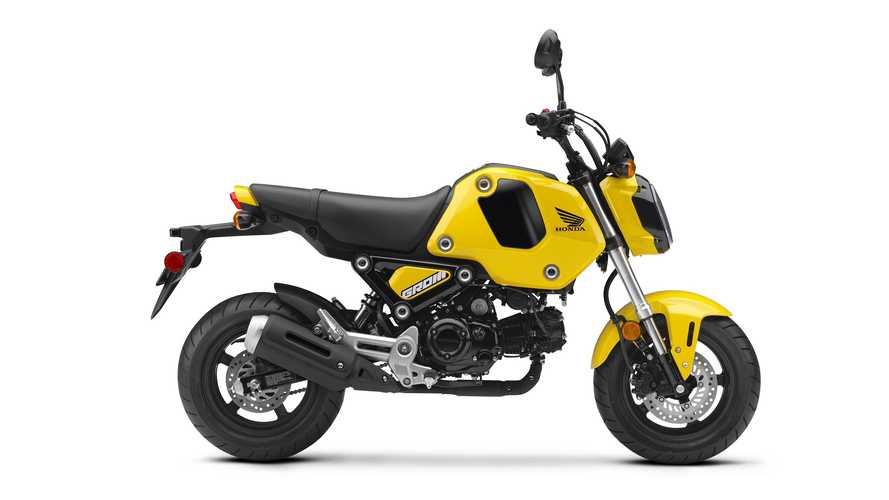 Redesigned Honda Grom Is Coming To America As A 2022 Model