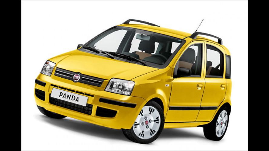 """Glücklicher Panda: Fiat bringt das Sondermodell ,Happy"""""""