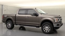 2020 Ford F-150 LMSE Off-Road Package