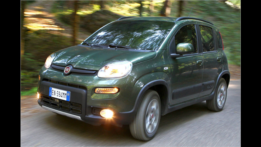Fiat Panda 4x4 1.3 16V Multijet (2012) im Test