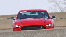 Ford Mustang Performance Model Spy Photo