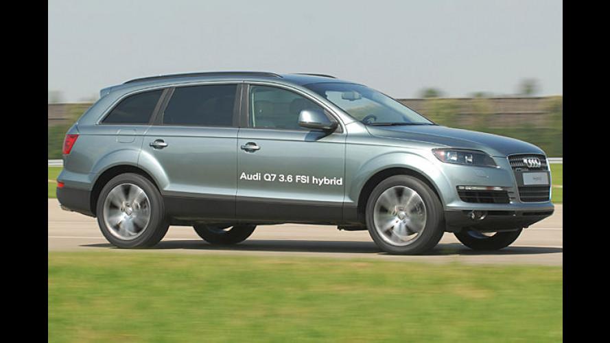 Ein bisschen von allem: Audis vielfältige Umweltstrategie