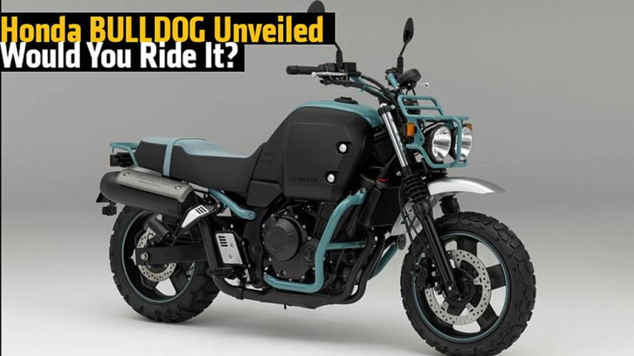 Honda BULLDOG Unveiled - Would You Ride It?