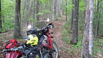 why i bought a kawasaki klr650