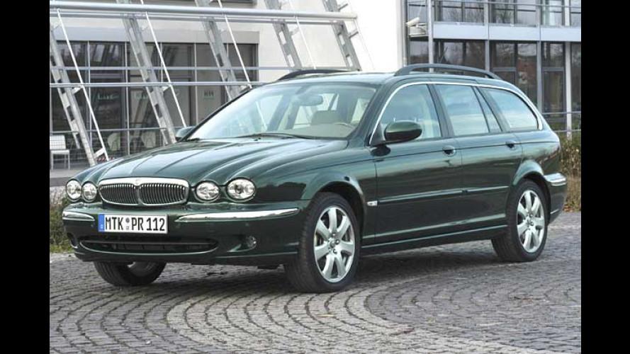 Jaguar X-Type Estate: Kombi-Zuwachs im Katzen-Körbchen