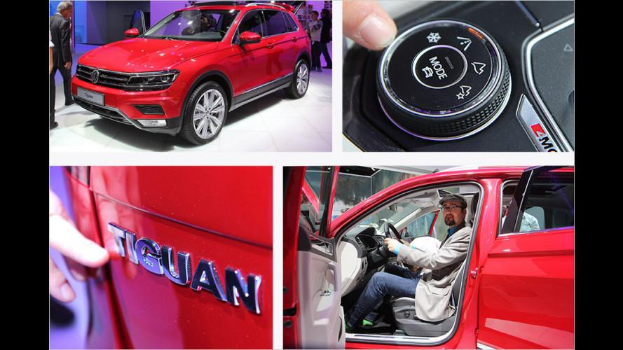 Sitzprobe: VW Tiguan