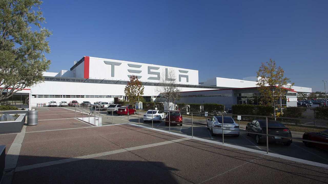 Tesla построит отдельный завод для производства Model Y