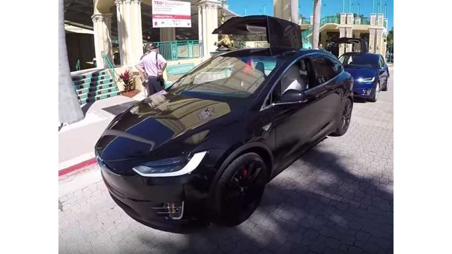 Tesla Model X - Video Interview With Owner