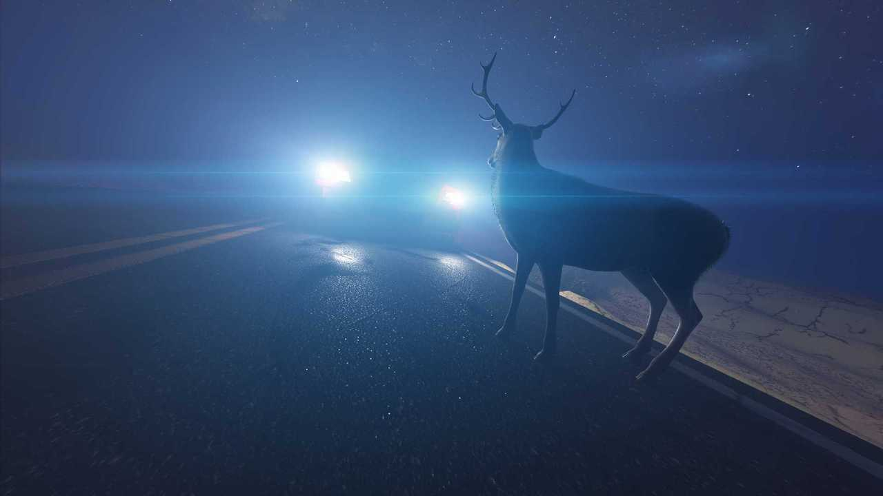 Deer in front of a car headlights at night illustration