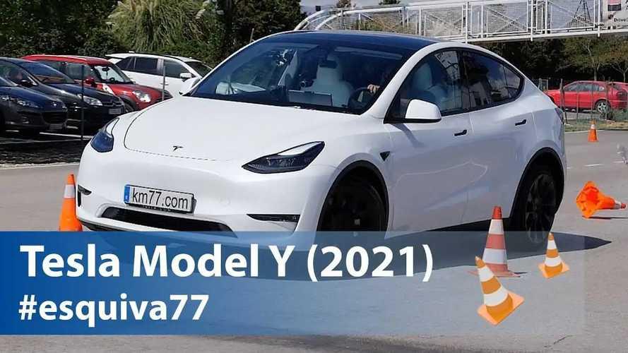 Tesla Model Y, ecco come se la cava nel test dell'alce